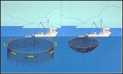 TYPES OF COMMERCIAL FISHING VESSELS – QUEEN CHARLOTTE ...